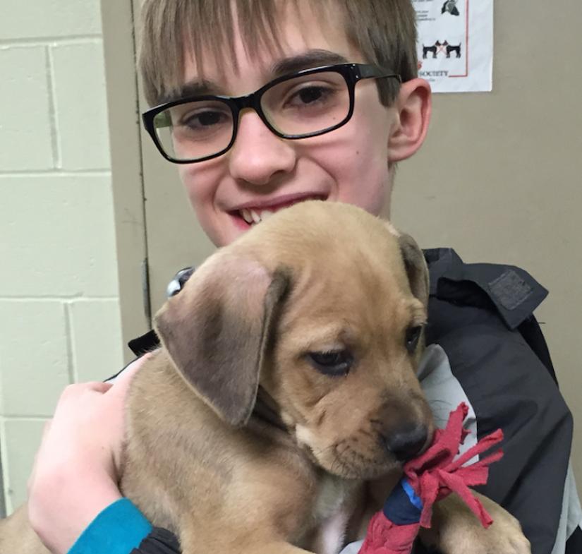 One of Mr. Auslander's students gives a puppy one of the dog toys his class made during their Imagination Chapter session.